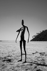 Salt Lake Statue (SawardPhotography) Tags: australia salt lake statue anthony gormley ballard lakeballard outback dry hot