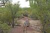 Desert Tracks (craigsanders429) Tags: tracks railroadtracks desert arizona tucsonarizona arizonadesert sonorandesert desertplants desertfloor trees plants gardenrailway
