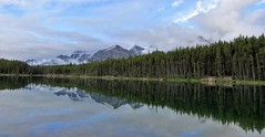 Mirrored Shore (Patricia Henschen) Tags: herbertlake banff nationalpark parks parcs canada alberta lake mountains rocky northern rockies icefieldsparkway clouds fog reflection