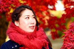 Beautiful Lady at Gotokuji Temple (Dakiny) Tags: 2017 winter december japan tokyo setagayaward gotokuji city street temple gotokujitemple autumnleaves autumncolors maple red people portrait female woman lady bokeh d750 afsnikkor85mmf18g nikonafsnikkor85mmf18g