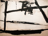 Painting Number 2, 1954 (Jonathan Lurie) Tags: oil painting kline art museums modern moma new york city 1954 museum franz artmuseum artinmuseums franzkline modernart museumofmodernart newyorkcity newyork oilpainting unitedstates us