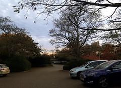 car park quickie