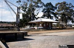 2924 Darkan Railway Station 9 April 1982 (RailWA) Tags: railwa philmelling westrail 1982 darkan railway station
