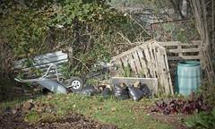 A lot meant (Andrew Gustar) Tags: garden allotment wheelbarrow compost bin fence bags