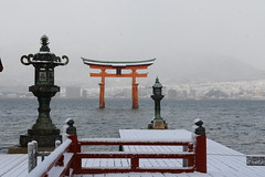 Snowy Shrine (yukky89_yamashita) Tags: 世界遺産 厳島神社 snow 広島 宮島 hiroshima japan gate