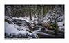 Winter im Harz (H. Roebke) Tags: schnee de canon5dmkiv landscape landschaft braunlage nature water germany rural wald harz snow bodefälle hdr baum tree forest ndfilter canon1635mmf28lisiii winter natur lightroom wasser
