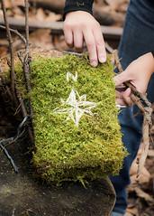 Field-Guides-9_w (bgmills) Tags: landart environmentalart outdoorinstallation artonthetrail artinnature natureinart bookart