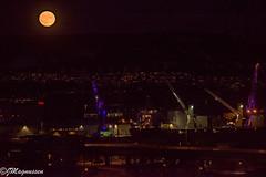 Supermåne over Drammen