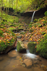 Autumn Colors (Rob Christiaans  Nature and Wildlife) Tags: eifel germany butzerbachtal autumn fall cascade water stream forest gitzo gt5532ls lpm canon polarizer canonef1634f4is canon5dmkiii luminositymasks lee