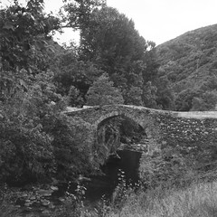 The Noguera Pallaresa river at Alos d'Isil (davidgarciadorado) Tags: pirineos river trees romanesque ilford 6x6 blackandwhite film medium format ngc