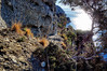 Liguria (denismartin) Tags: parconaturaleregionalediportofino portofino sanfruttuoso protectedarea unescoworldheritagesite patrimoinemondialdelunesco sea mediterranée mediterraneansea liguria italia italy denismartin hiking trek trail footpath nature myrtle pine