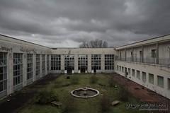 """""""Il giardino delle vergini suicide"""" (Pigeoneyes.com) Tags: abandoned summercamp colonia giardini garden fontana fountain pigeoneyes lostitaly abbandono edificiabbandonati"""