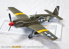 A1 - A36-A Apache - David Burling