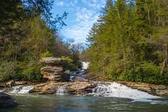 Muddy Creek (ESMiller59) Tags: maryland publiclands stateparks parks