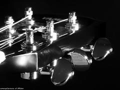 Musical Instruments (somareja*pictures) Tags: sw olympusem10 olympusdigital macro gitarre musicalinstruments flickr markusreber somarejapictures