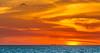 gulf sunset (otgpics) Tags: fishing boat shrimp crab dusk blue dark florida gulf coast bright orange silhouette longboat key barrier island gulls marine birds swirling cloud formation