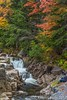 Watching the River flow (keithhull) Tags: kancamahushighway swiftriver newhampshire falls landscape trees unitedstates 2017