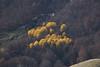 The Last Rampart / L'Ultimo Baluardo (luigig75) Tags: autumn foliage autunno abruzzo passo godi scanno fall 70d canonef70200mmf4lusm