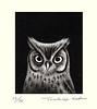 Scops owl (Japanese Flower and Bird Art) Tags: bird scops owl otus strigidae toshio suda modern intaglio print japan japanese art readercollection