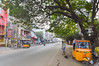Triplicane High Road (Francisco Anzola) Tags: ngc chennai madras india tamilnadu asia triplicane tree autorickshaw