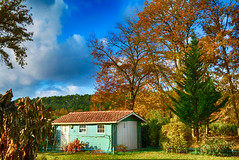 Contraste d'Automne (GerardMarsol) Tags: contrastes couleurs automne landes aquitaine