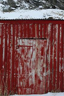 Chipped old wooden red rorbu fishing hut-snowcovered floor. Eggum-Vestvagoya-Lofoten-Norway. 0562