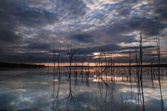 First Light on the Lake (forbidden0907) Tags: chestnutpoin nj usa sunrise lake cloud