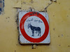 Fez, Morocco - Nov 2017 (Keith.William.Rapley) Tags: fez fes morocco rapley keithwilliamrapley 2017 nov november africa sign fezmedina medina oldtown donkey feselbali