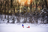 Our evenings (Elizabeth Sallee Bauer) Tags: harrisonbauer nature oliverbauer willeminabauer active boy child childhood cold coldweather colorful country fun kid nonurbanscene outdoors outside playing snow white winter wintersports youth