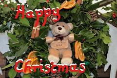 Happy Christmas (Martellotower) Tags: blaise bear happy christmas evergreen holly ivy berries wreath saint