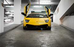 Lamborghini Murcielago. (Andy @ Pang Ket Vui ( shootx2 )) Tags: lamborghini murcielago supercar borneo imports meet aeropod sabah