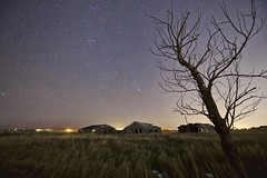 "Gemini  Orion and Taurus meteor ""Explored!"" (John Andersen (JPAndersen images)) Tags: calgary farm fireball geminid holiday lights meteor night stars tree"
