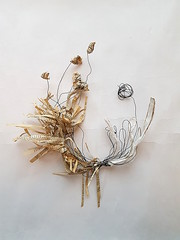 study in paper and wire (Ines Seidel) Tags: paper paperart wire text experimental shape bookpage alteredbook papier draht papierkunst freestyle abstract creature