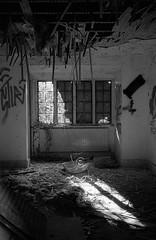 Come In (DanRSmith) Tags: bw blackandwhite light contrast agfaapx400 kodakd76 canoneos30 canon40mmpancake