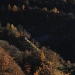 Late Autumn in Ticino (47/52 - 2017) thumbnail