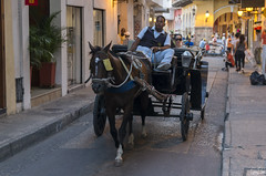 Dans les rues de Carthagène (Rosca75) Tags: colombia colombie people lifestylephotography carriage