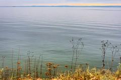 La Malbée (cébé céline) Tags: rivage rivièrelamalbaie fleuvesaintlaurent automne navire horizon herbacée novembre rive baie