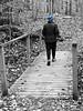 Patapsco SP ~ Cascade Falls trail (karma (Karen)) Tags: patapscosp elkridge maryland howardco mdstateparks cascadefallstrail bridges fences woods trails bw monochrome selectcolor iphone