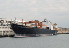 USNS Major Stephen W. Pless T-AK-3007 (jelpics) Tags: port sea ship vessel blackfalconterminal cruiseportboston rayflynncruiseport naval navy usn usnsmajorstephenwplesstak3007 tak3007 militarysealiftcommand roro crane cranes usnavy boat boston bostonharbor bostonma harbor massachusetts ocean