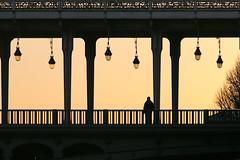 Pont de Bir-Hakeim (erichudson78) Tags: france iledefrance paris16ème pontdebirhakeim pont bridge sunset coucherdesoleil silhouette architecture canoneos5d canonef200mmf28lusm backlight contrejour 7dwf urbanlandscape paysageurbain