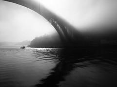 Foggy day (Francisco (PortoPortugal)) Tags: 2702017 20171003fpbo6334 bw nb pb nevoeiro fog riodouro douroriver pontedaarrábida arrábidabridge porto portugal portografiaassociaçãofotográficadoporto franciscooliveira