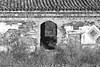 A door to nowhere - Una puerta a ninguna parte (ricardocarmonafdez) Tags: naturaleza nature cielo sky nidos nests orilla shore riverbank birds house abandoned tejado roofs puerta door sunlight light shadows monocromo monochrome blackandwhite bw bn ricardojcf ricardocarmonafdez 60d 1785isusm canon
