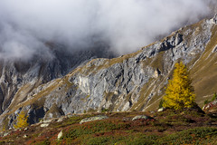 Herbst in den Bergen (Armin Mathis Fotografie) Tags: schweiz switzerland graubünden abula albulapass crap alv laiets fog nebel lärchen