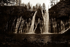 Burney Falls CA (FotoFreekus) Tags: bw falls nature water trees film tmax