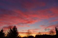 Colourful Sunrise This Morning (Jeannot7) Tags: sunrise cobourg ontario