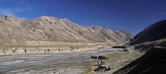 Breathtaking Ladakh (mala singh) Tags: mountains himalayas ladakh india