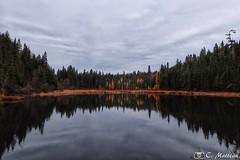 171025-17 Le mélèze en automne (clamato39) Tags: lac lake eau water ciel sky clouds nuages nature forest forêt autumn automne provincedequébec québec canada