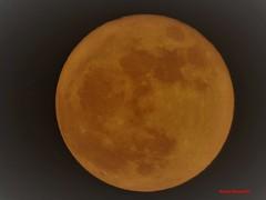 Super Moon 2017 (Anton Shomali - Thank you for over 1 million views) Tags: super moon december 2017 12 night dark fullmoon month year sky dusk nature season panasonic dmcfz70 zoom closeup