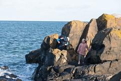 NorthBerwick-17110528 (Lee Live: Photographer (Personal)) Tags: beach boats childrenplaying climbingrocks eastlothian leelive northberwick ourdreamphotography rocks seagull wwwourdreamphotographycom