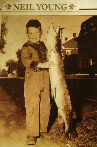 Neil Young fan photo
